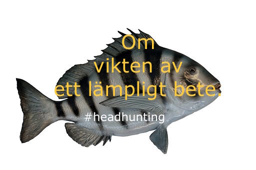 fisk_post_linkedin